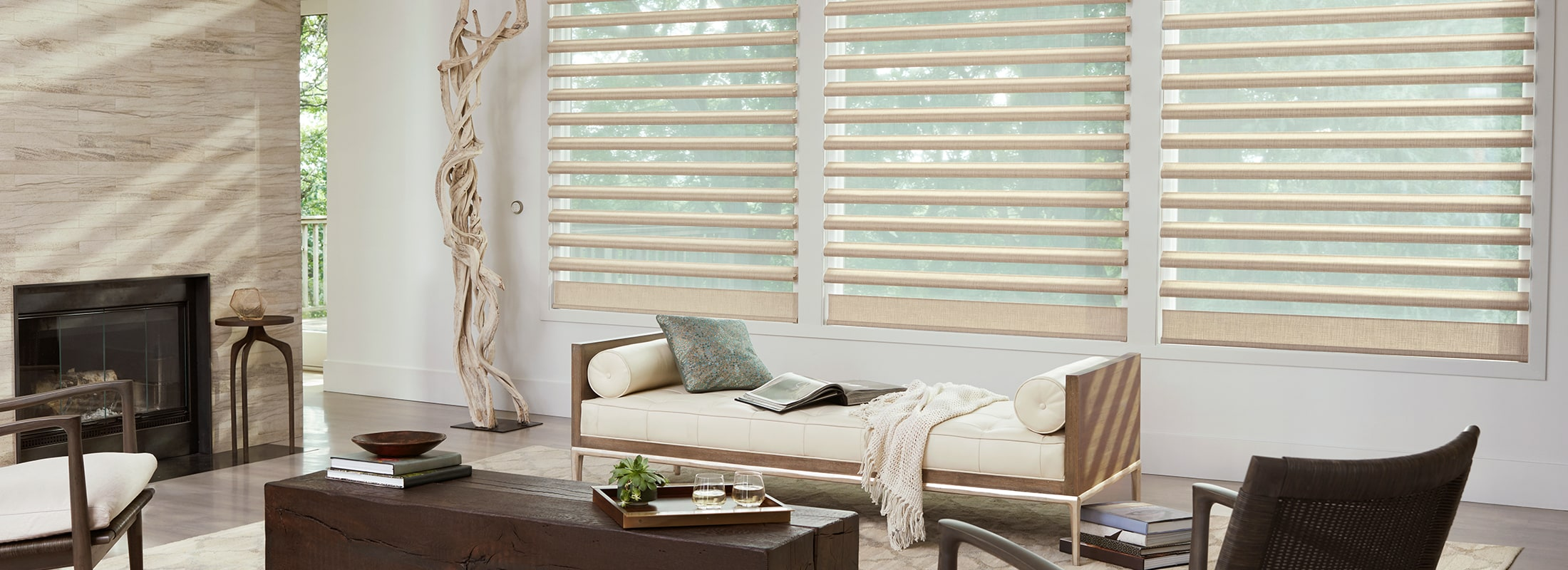 Sheer Shadings Window Shadings Pirouette 174 Hunter Douglas