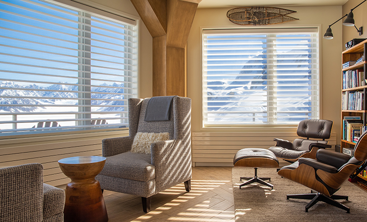 Silhouette ClearView Window Shadings