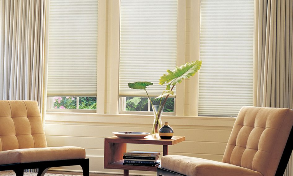 Duette honeycomb shades with drapes in sitting room