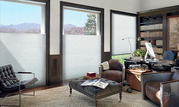 Duette Honeycomb Shades in home office