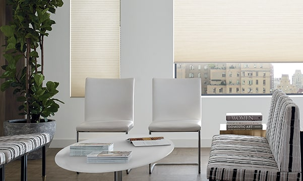 noise reduction shades in living room