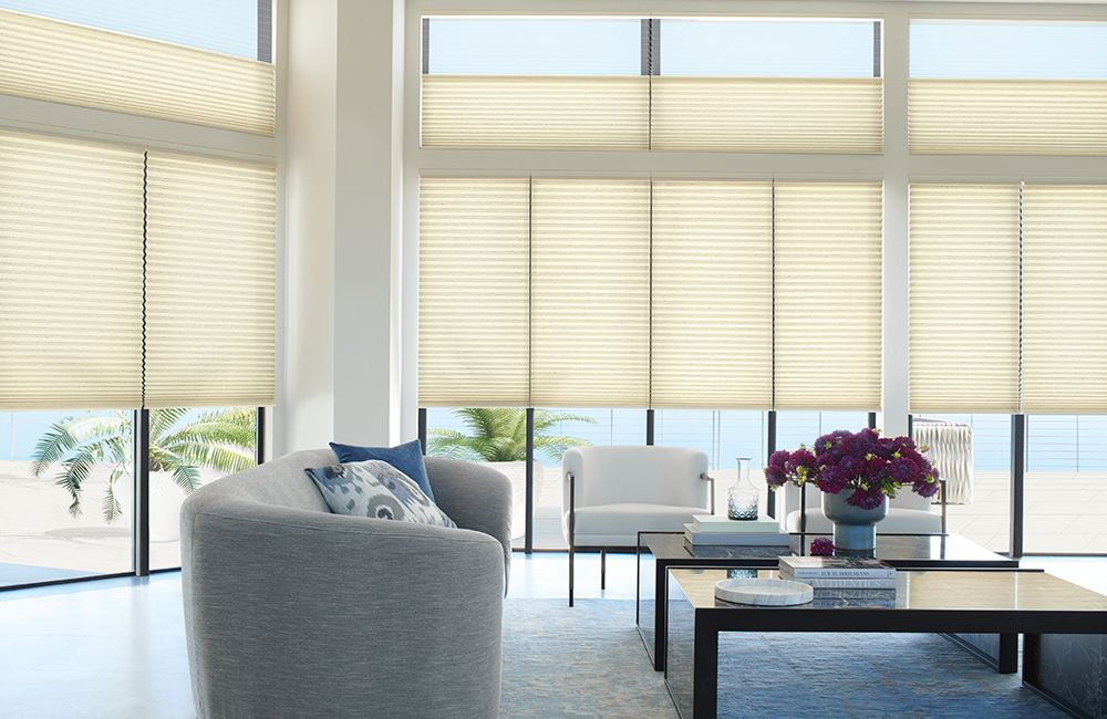 Duette Honeycomb Shades in living room