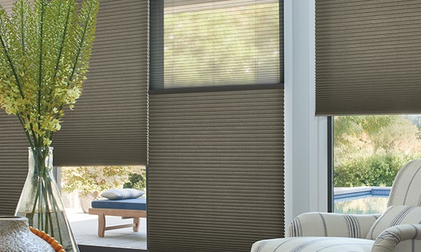 Duette Honeycomb Shades on Living Room Windows