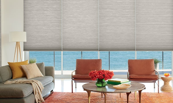Duette Shades in Living Room