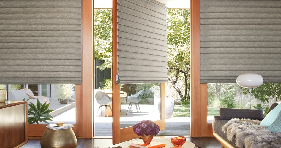 Door Blinds For French Doors Front Shades Hunter