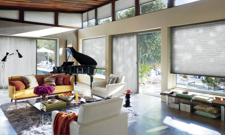 Glass door window treatments - Duette