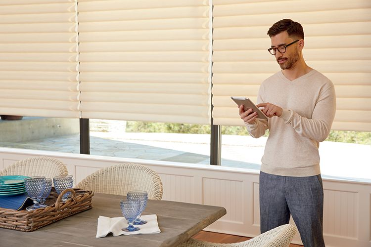 Vignette Modern Roman Shades with PowerView Automation