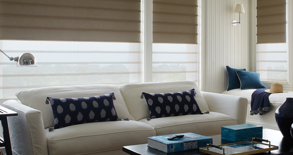 Showing Window Shade Opacity in Living Room