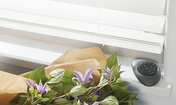 Parkland Wood Blinds with Pebble Remote