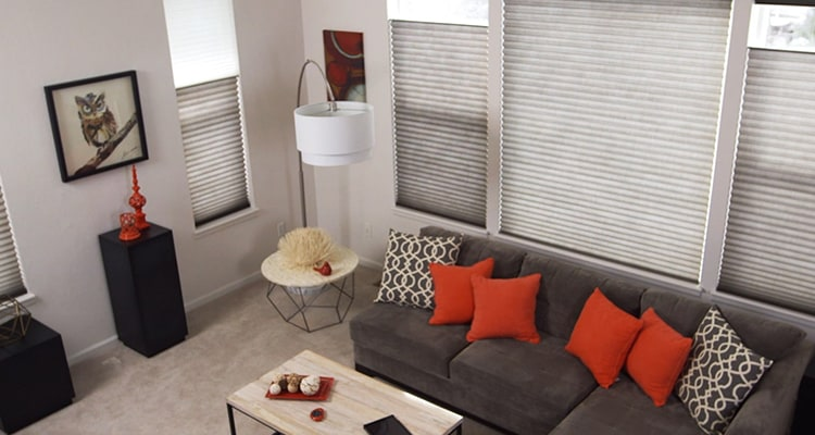 Energy efficient window treatments video thumb