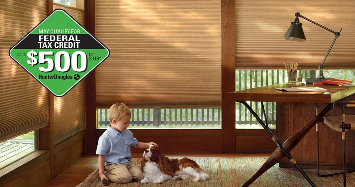 Federal tax credit logo with Child and Dog by Window