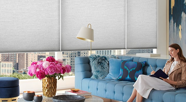 Cellular shades - Duette