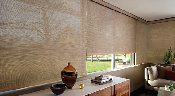 Roller Shades Solar Fabric Blackout Hunter Douglas
