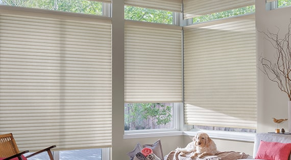 Ivan S Blinds And More In La Quinta Ca Window Treatments