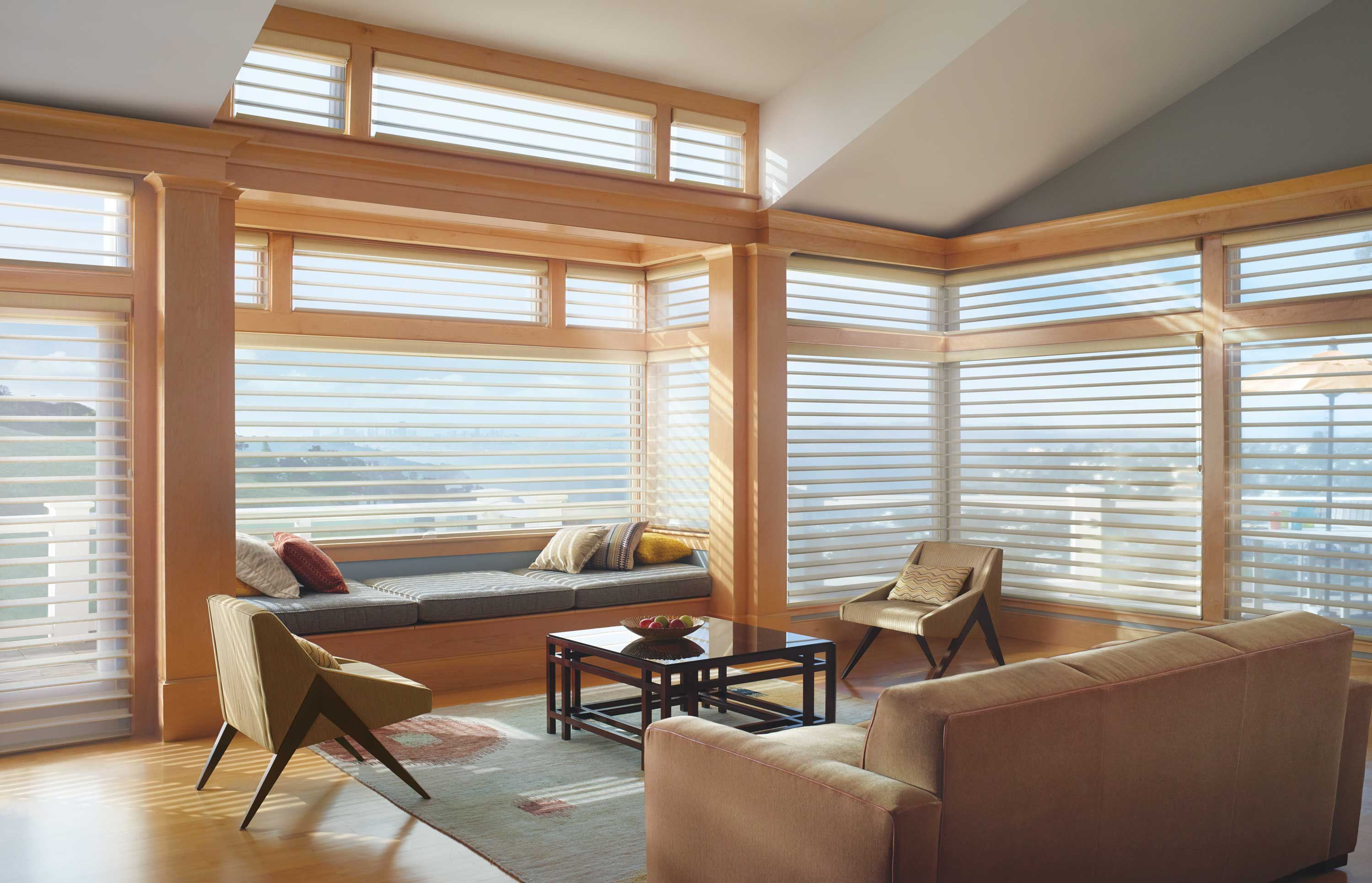 Living room with Hunter Douglas.