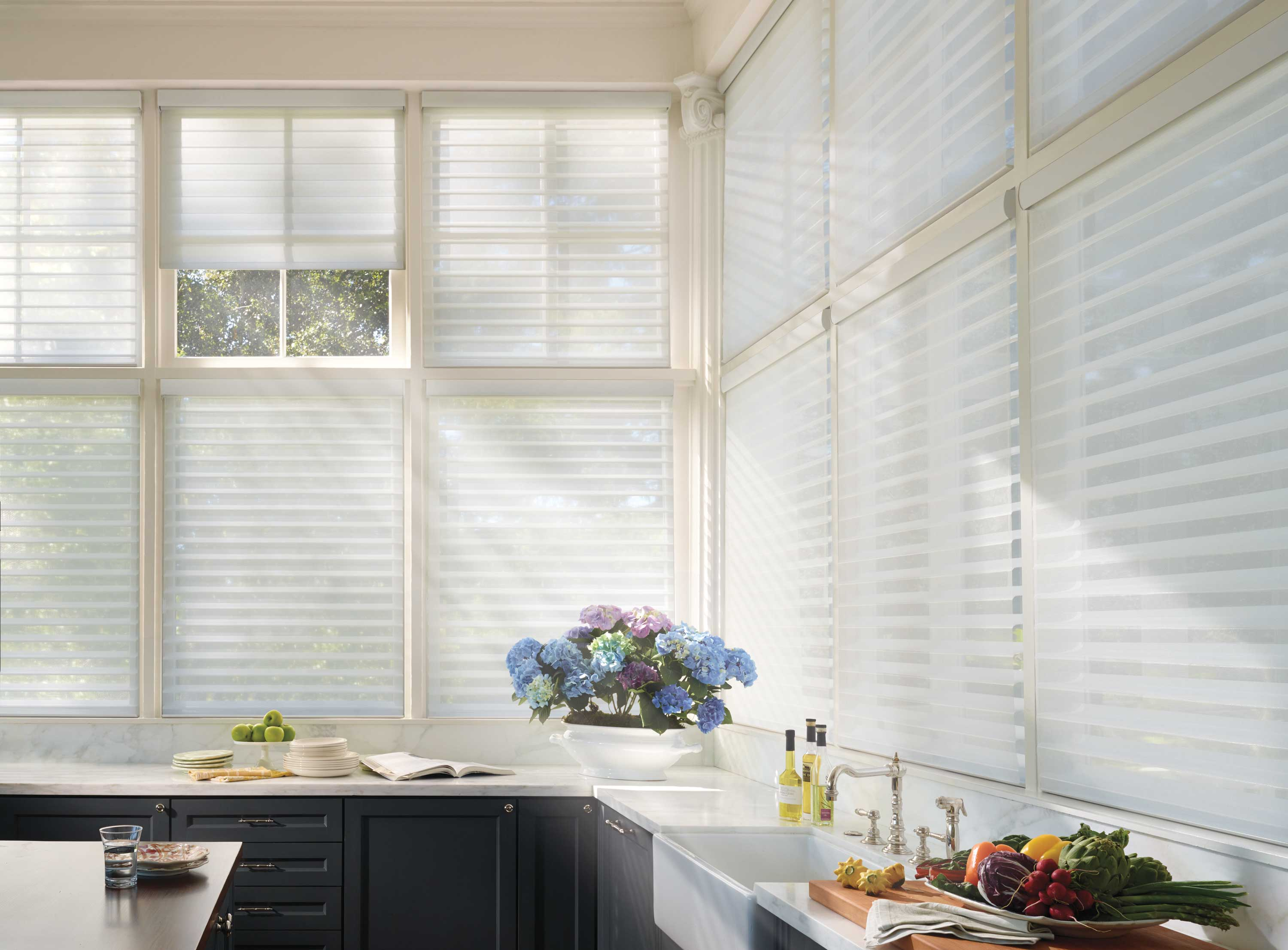 Big Windows covered with Silhouette shadings.