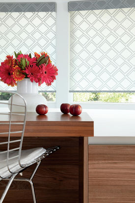Designer Roller Shades With Cannes Oxybii
