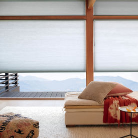 Duette<sup>&reg;</sup> Honeycomb Shades
